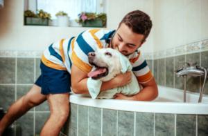 Dog Washing in Bathtube