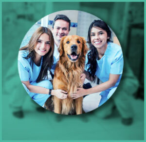 Dog at veterinary with his family
